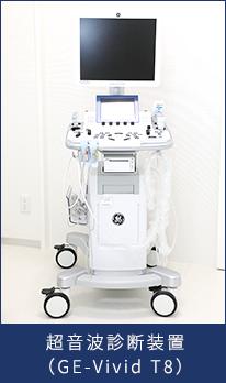 超音波診断装置(GE-Vivid T8)